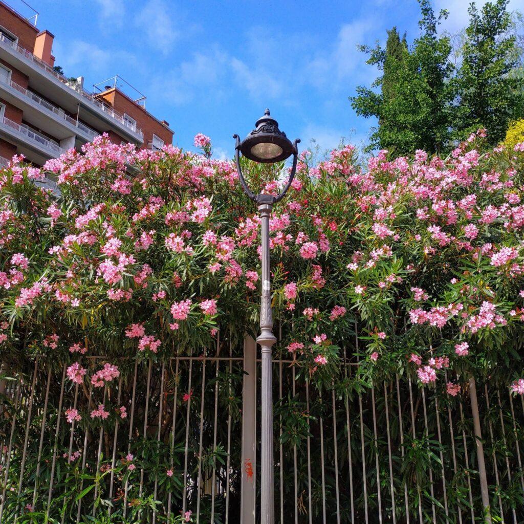 Погода в Барселоне весной