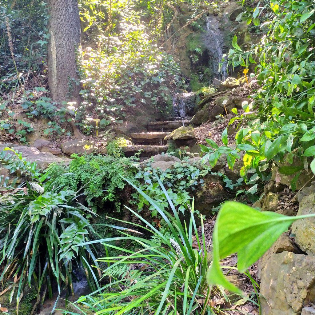 сады и парки Барселоны