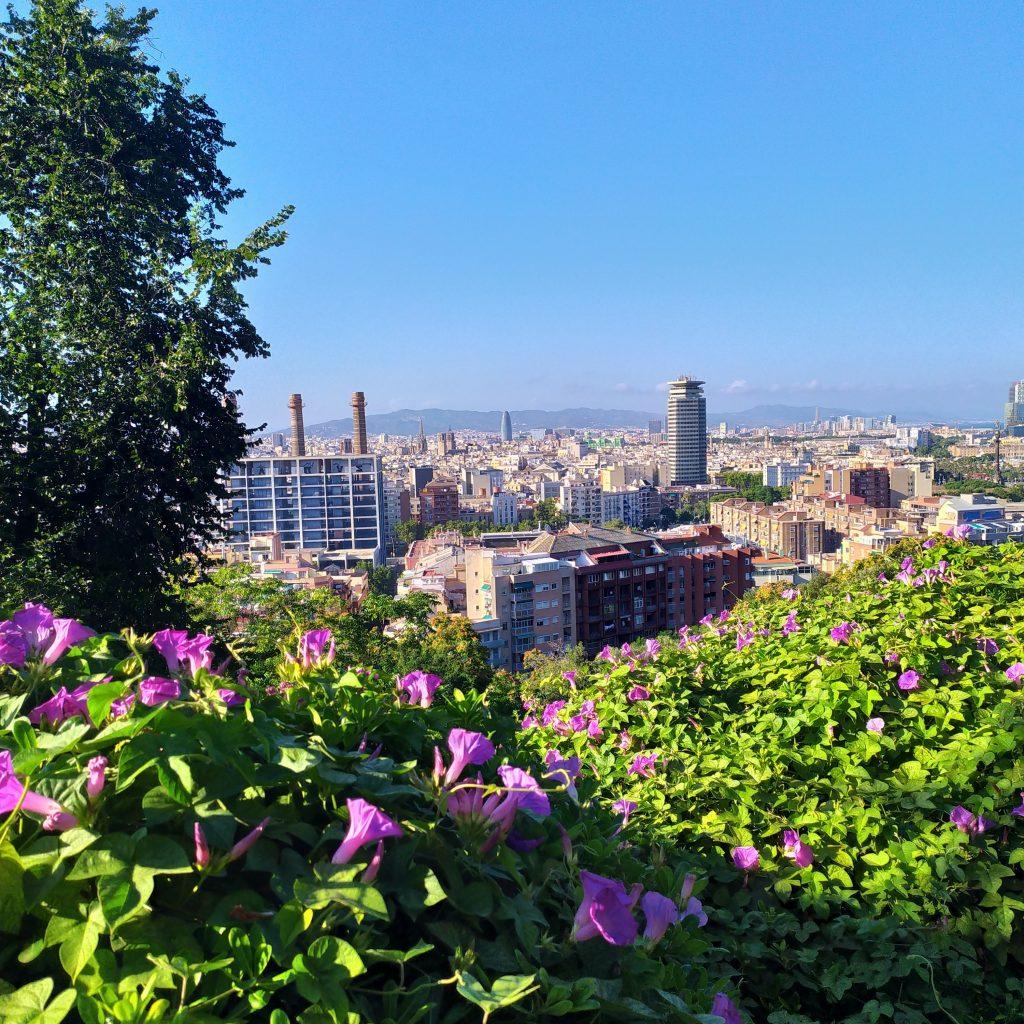 вид на Барселону, смотровые площадки в Барселоне